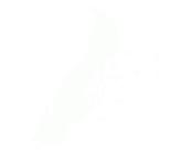 Michele Bavassano Logo
