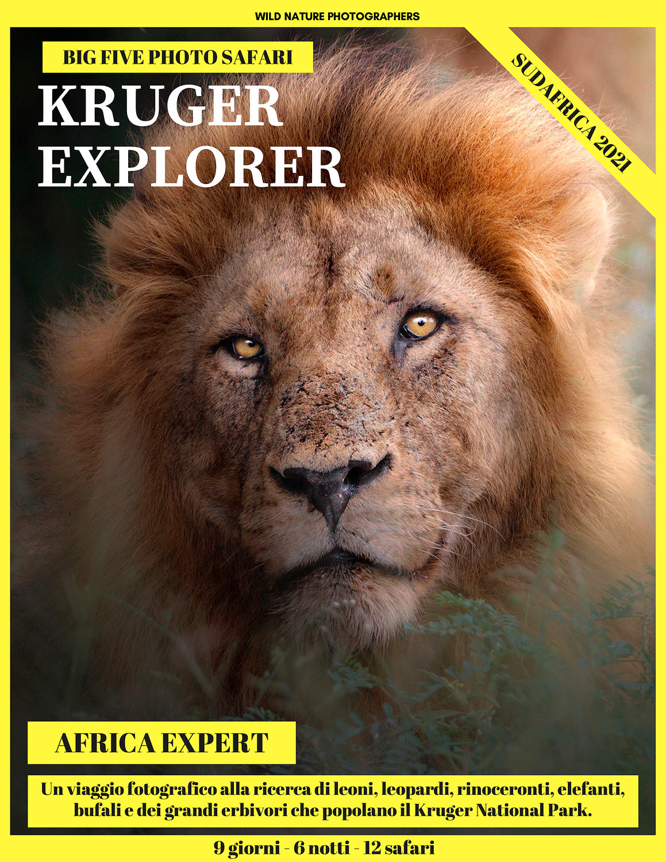 safari nel kruger national park fotografia naturalistica