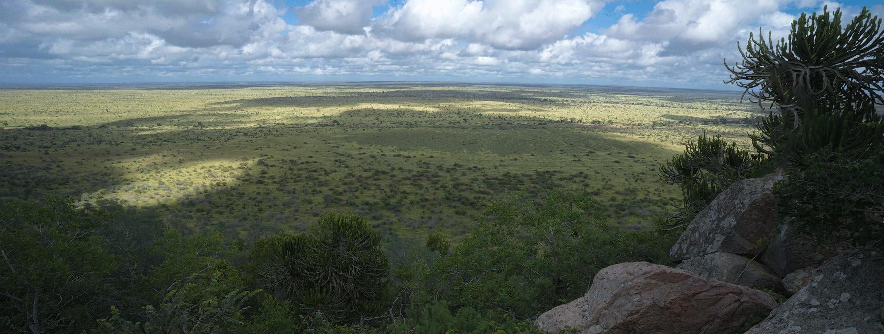 kruger national park viaggio fotografico