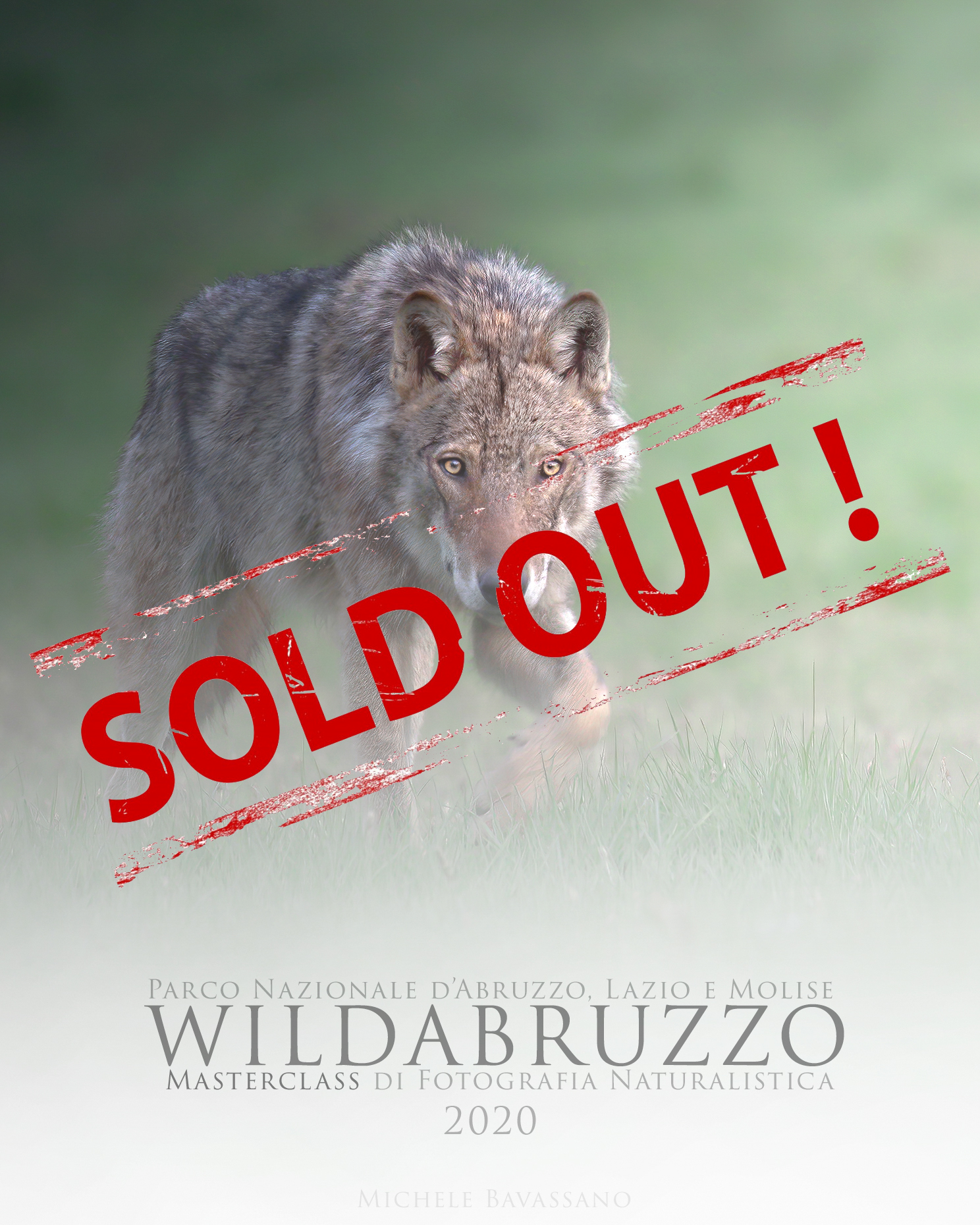 MasterlClass di fotografia naturalistica sold out