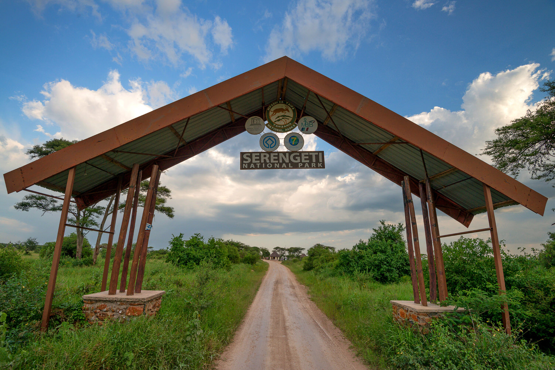 serengeti national park viaggio fotografico