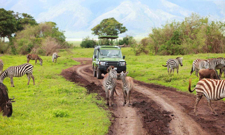 area di conservazione del ngorongoro viaggio fotografico