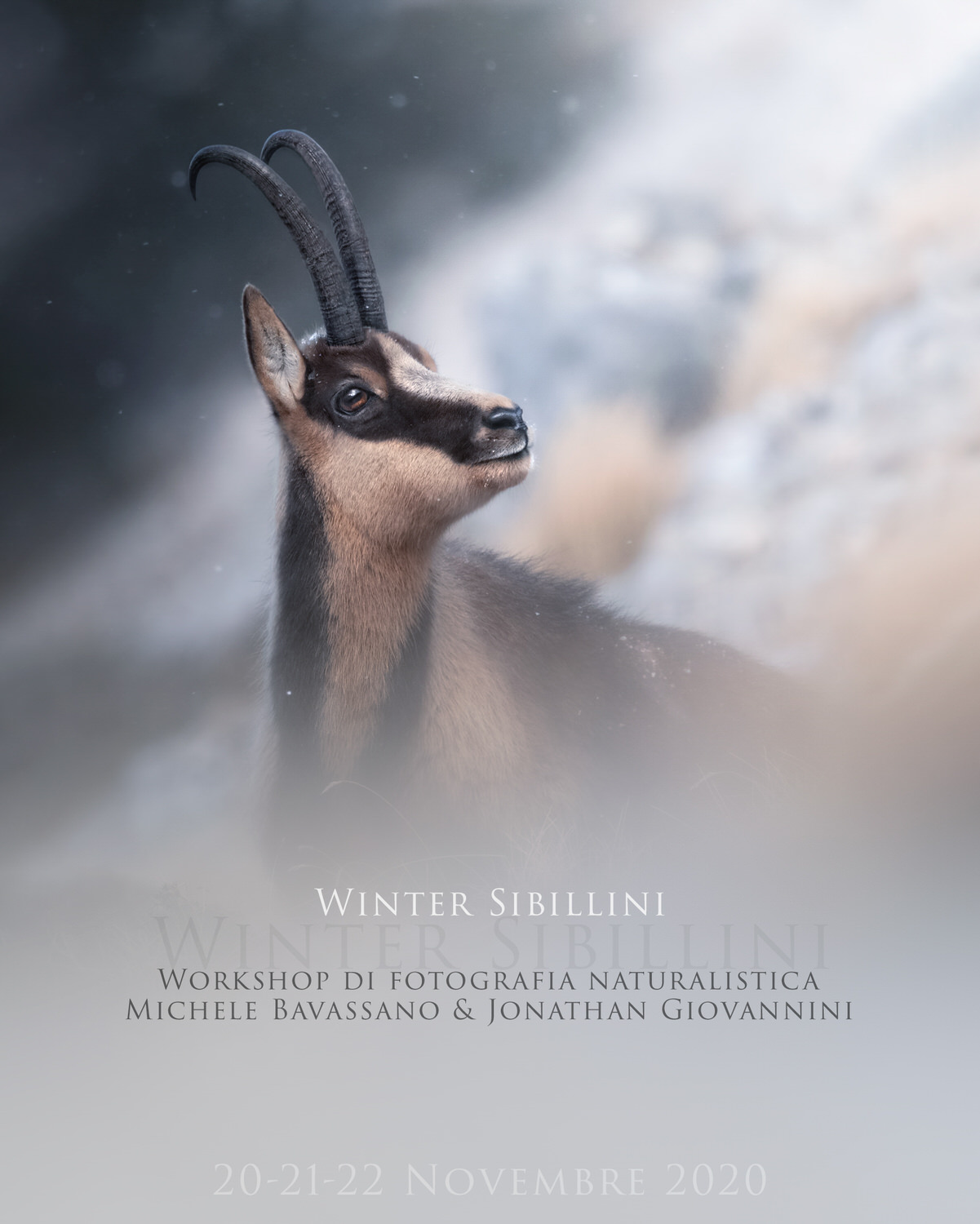 Winter-Sibillini-workshop di fotografia naturalistica