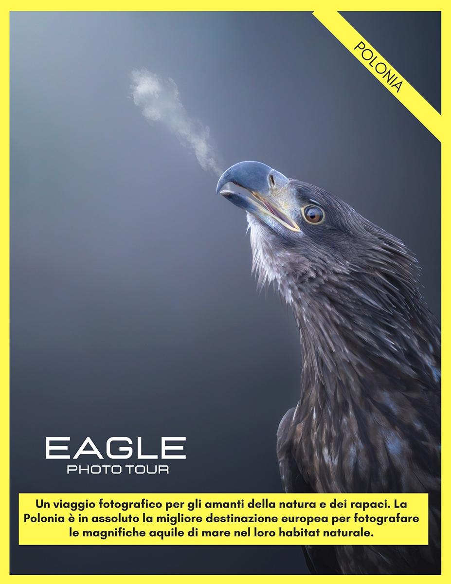 viaggio-fotografico-plonia-aquile-fotografia-naturalistica