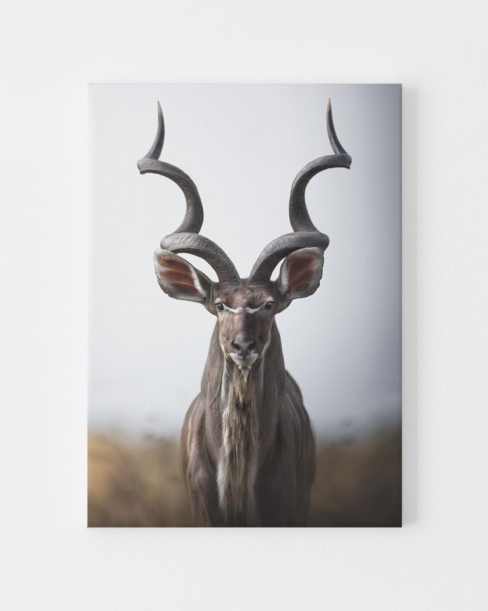 Canvas Kudu limted edition prints