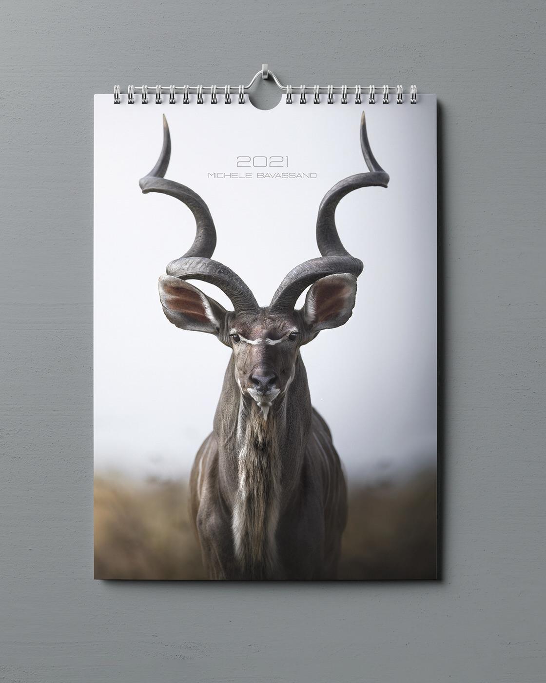 Calendario fotografico michele bavassano