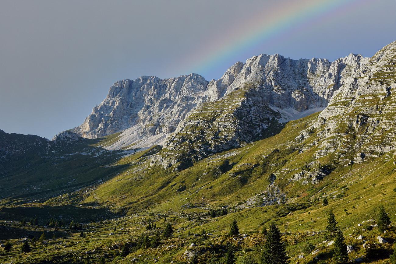 workshop di fotografia naturalistica base - Friuli venezia giulia