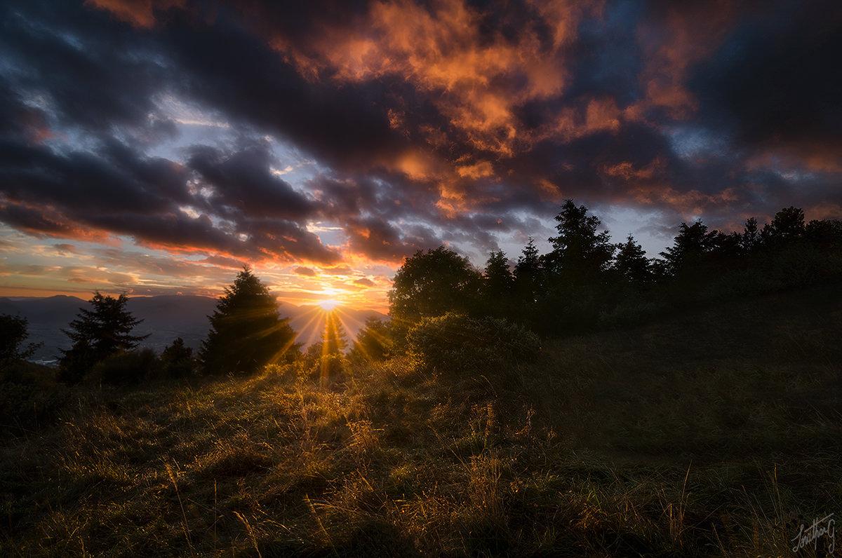 Workshop-fotografia-naturalistica-parco-nazionale-dei-monti-sibillini