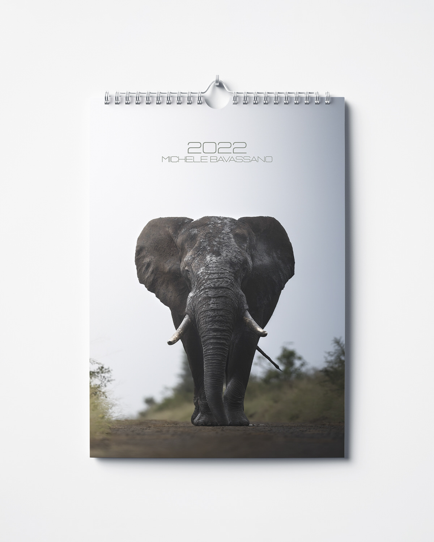 Wild Calendar Michele Bavassano