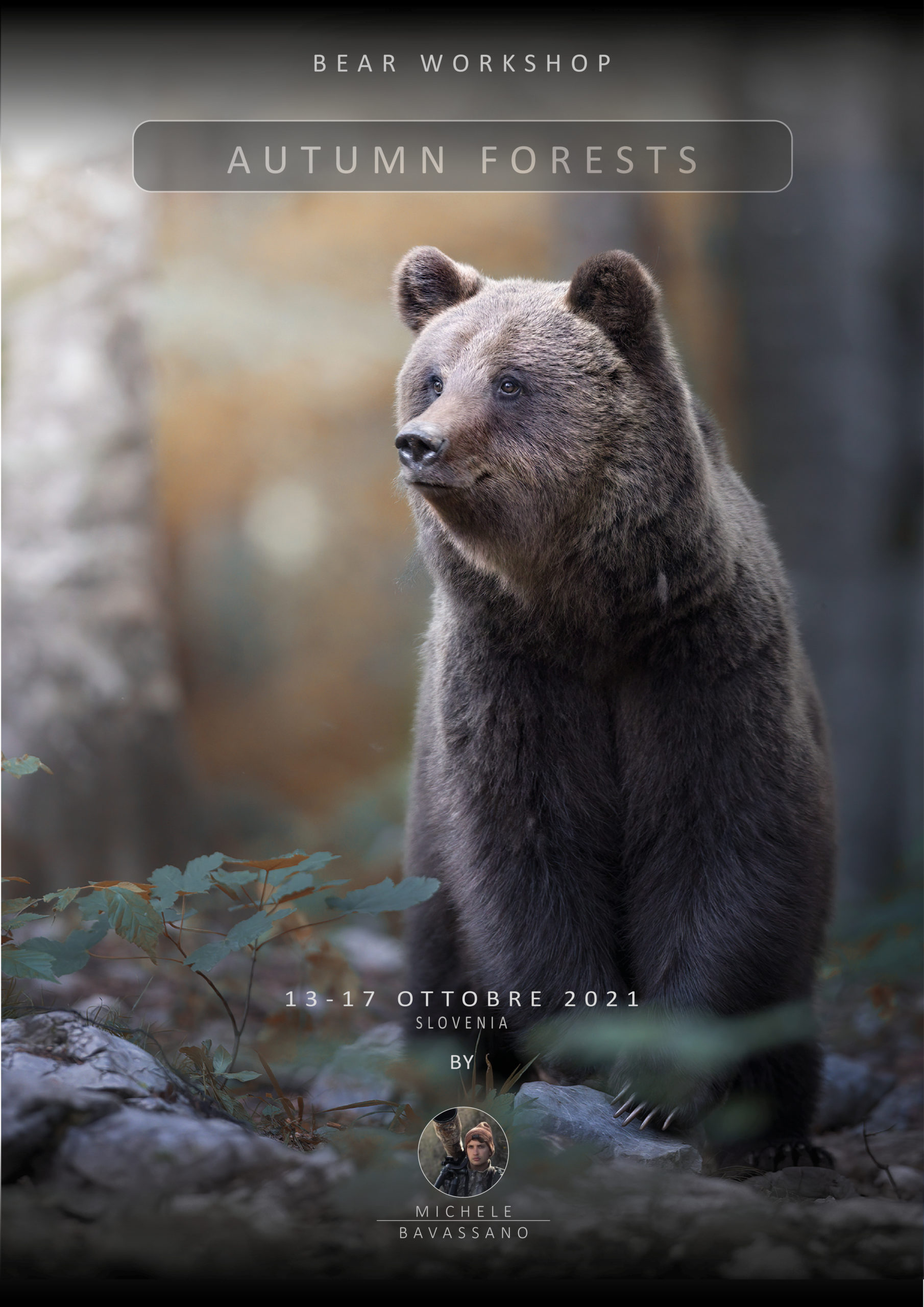 workshop bear photo tour